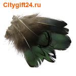 BS Перо фазана 4-7 см